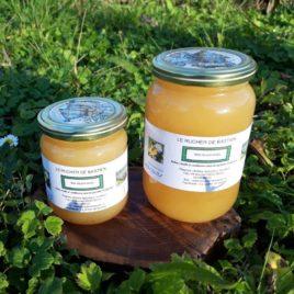miel de printemps-ariège-pyrénées