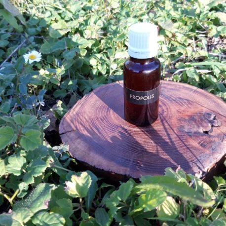 propolis-apiculture-ariège